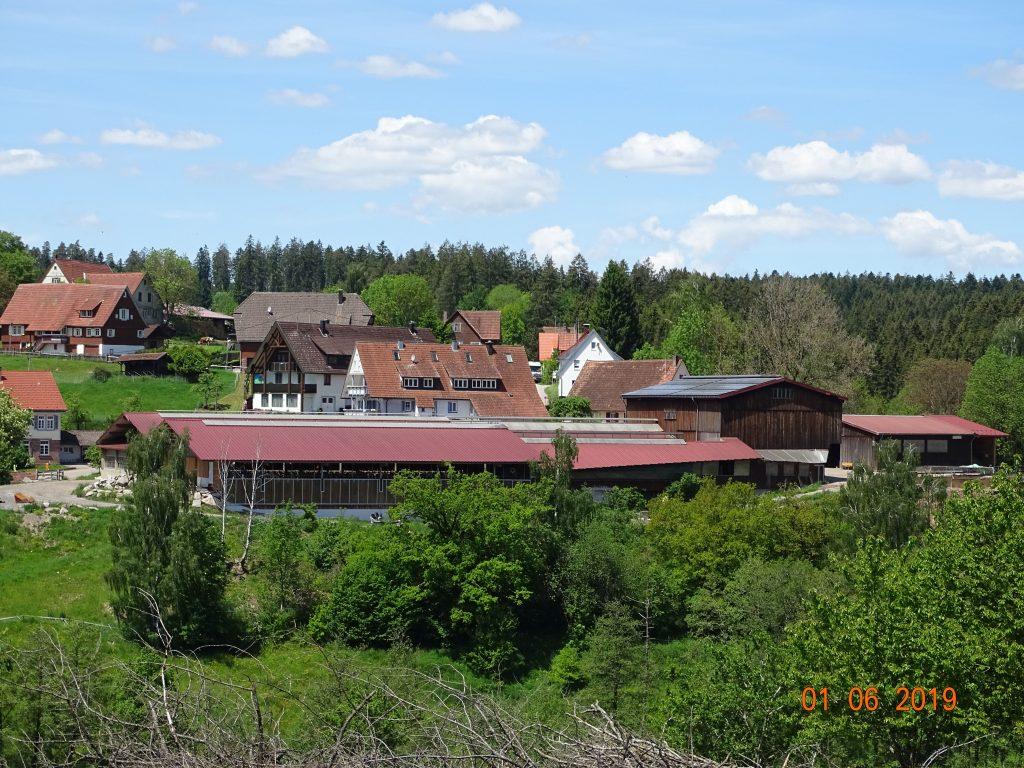 Der heutige Frutenhof - Eine moderne Landwirtschaft mit rd. 300 Milchkühen